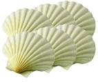 Baking Shells 3 1/2