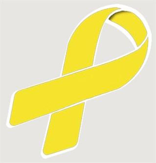 Awareness Ribbon Helmet Decal