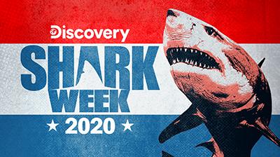 Shark Week Returns this Month