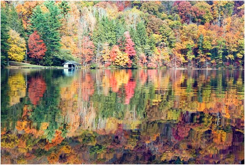 Fall Colors reflect from the pond in North Carolina