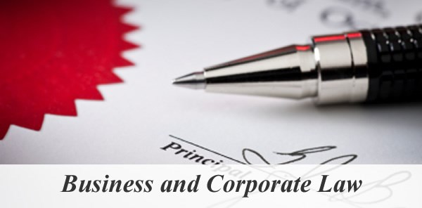 Business and Corporate Lawyer