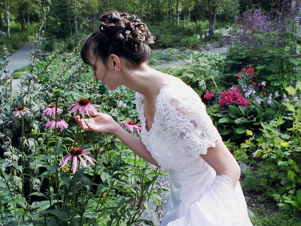 Alaska Botanical Garden - 1