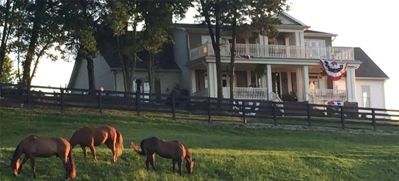 A&E Farm - 1