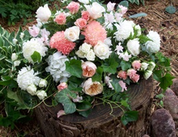 Botanics of Melbourne Florists, in South Yarra VIC 3141, SELECT STATE