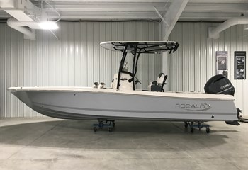 2019 Robalo R246 Cayman Alloy Grey liquid-unknown-field [type] Boat