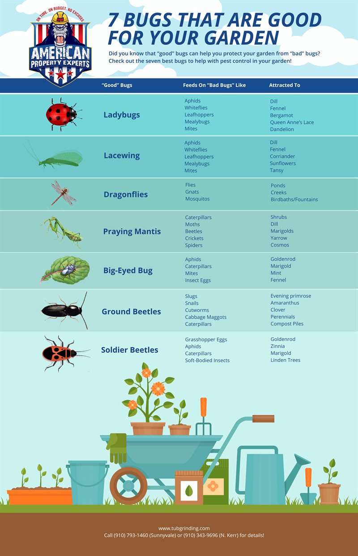 Bugs for garden pest control
